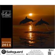 Safeguard 2014